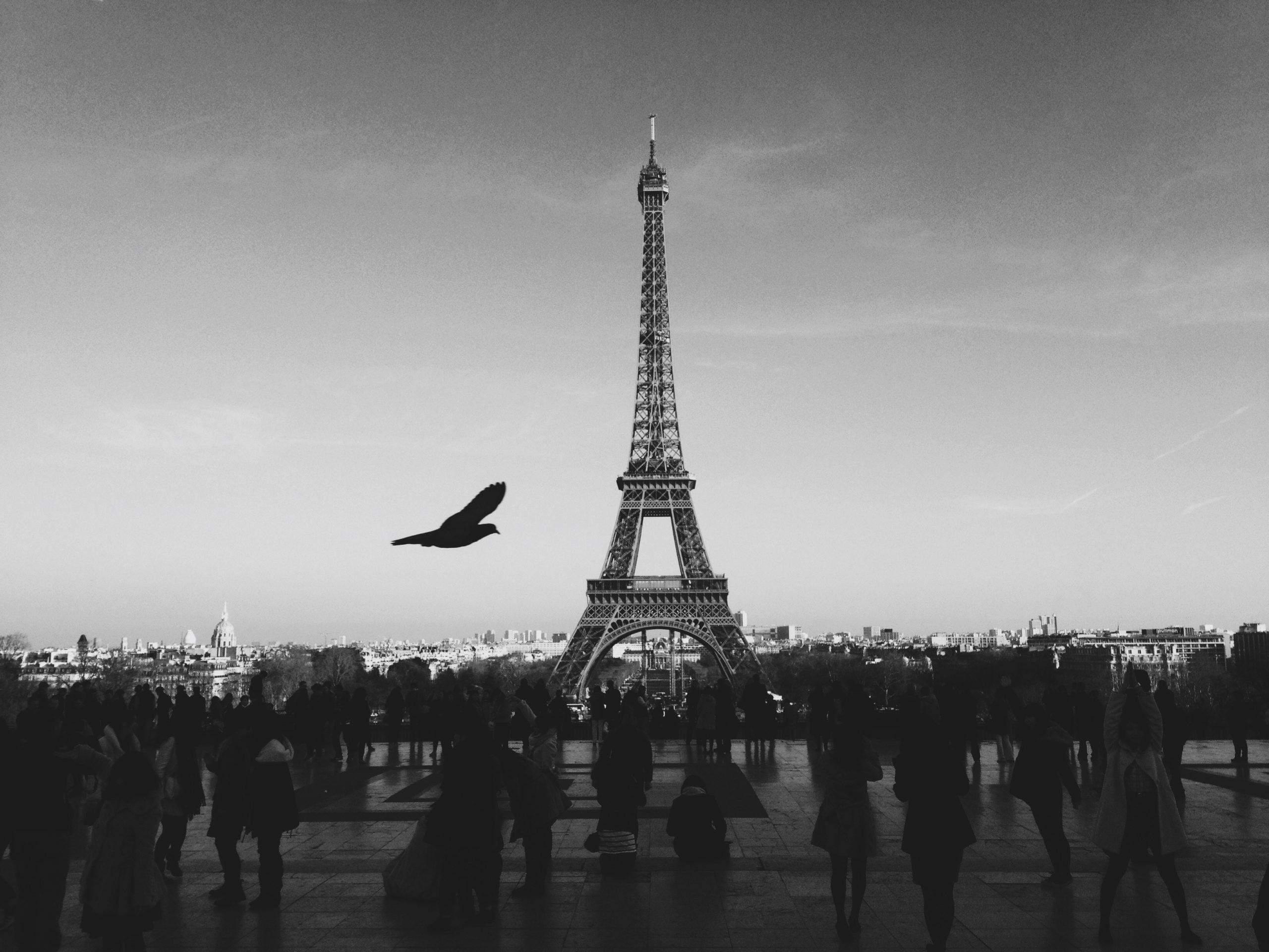 Paris, la capitale Gay